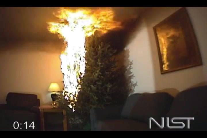 Brandversuch mit Weihnachtsbaum:…