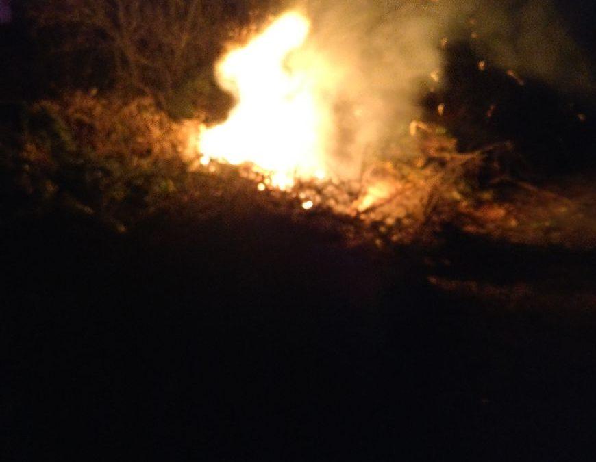 66-2017-brennt Grünecke