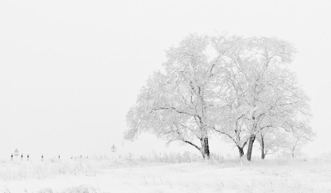 Wie weit ist der Winter entfernt?