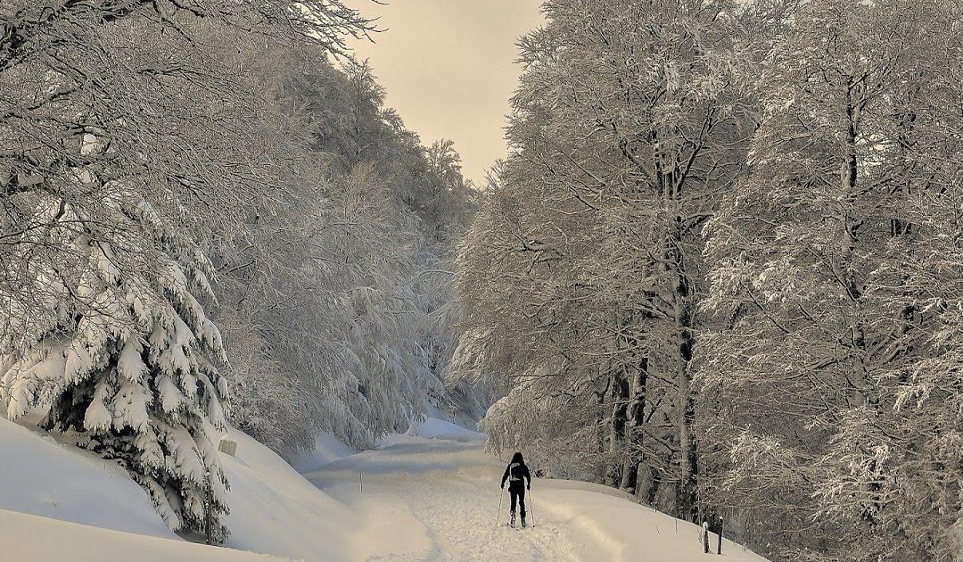 Schneewalze in der Nacht zum Montag