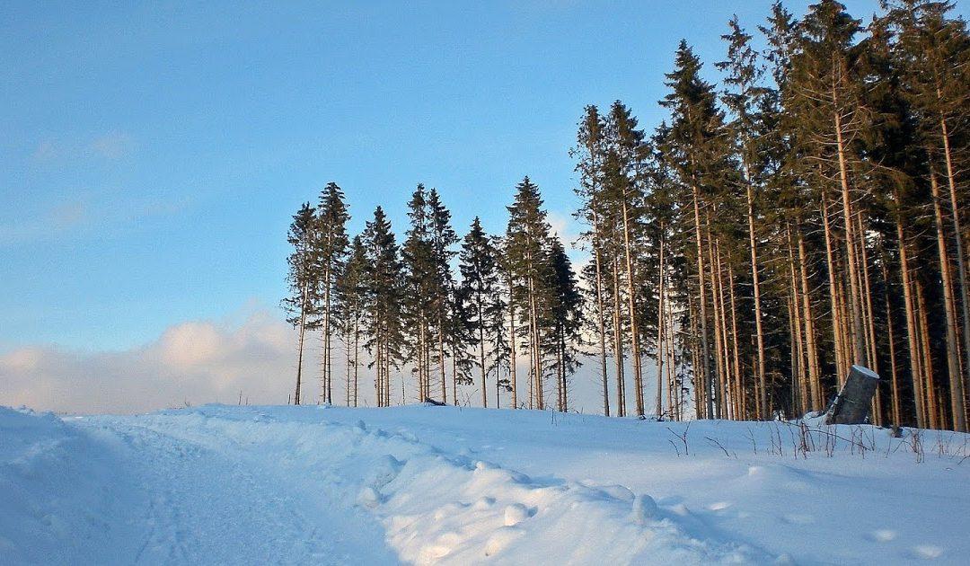 Mitte Januar bundesweites Winter-Comeback?
