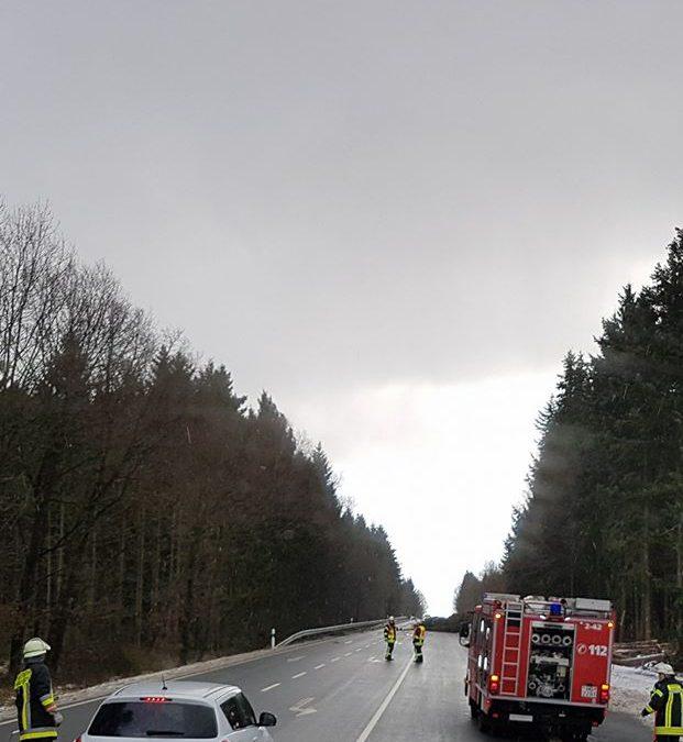 Bilderstrecke Sturm Friederike 2018