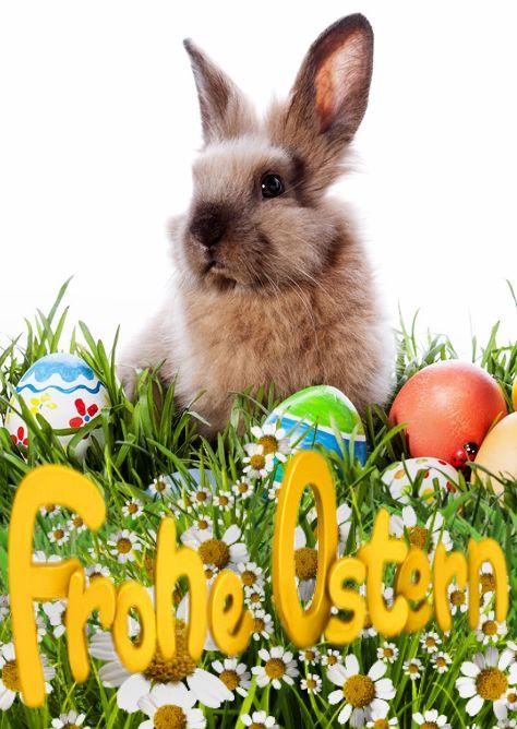 Ein schönes und gesundes Osterfest mit viel Glüc…
