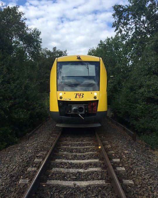 "Übung ""Unfall Taunusbahn""…"