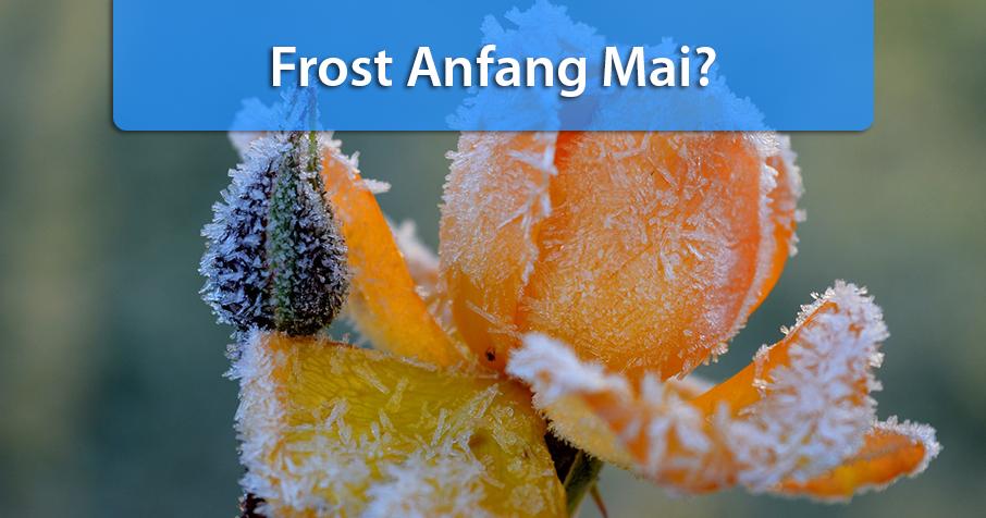 Nach warmer Phase: Frost und Flocken Anfang Mai?