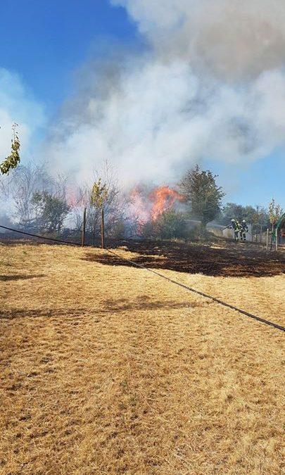 Bilder Flächenbrände Laubach 5.7.2019