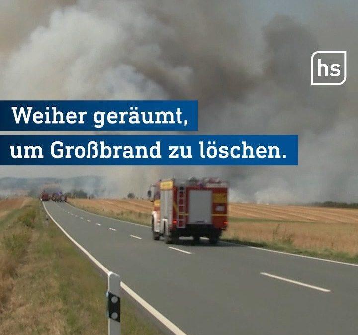 Laut Polizei hat die Feuerwehr den Brand bei Gr…
