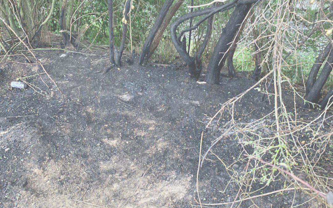 Wir weisen auf die hohe Wald- und Flächenbrandg…